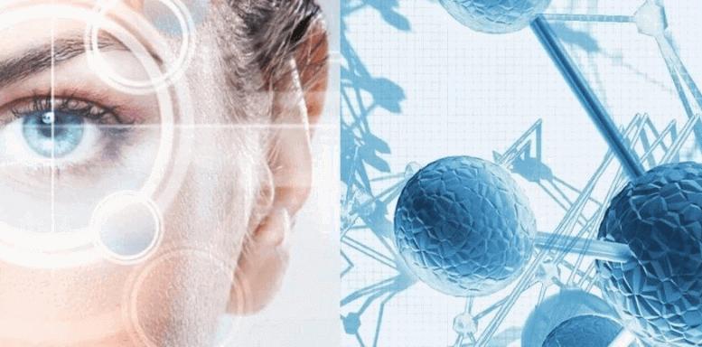 Что такое стволовые клетки