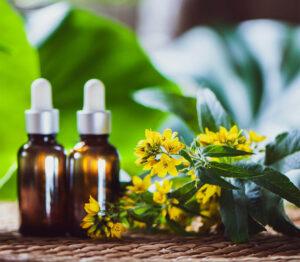 Косметика против старения anti-age, растительные экстракты