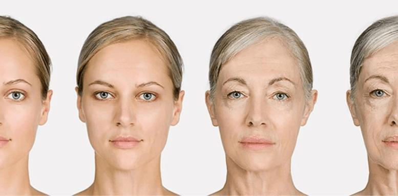 Почему кожа стареет